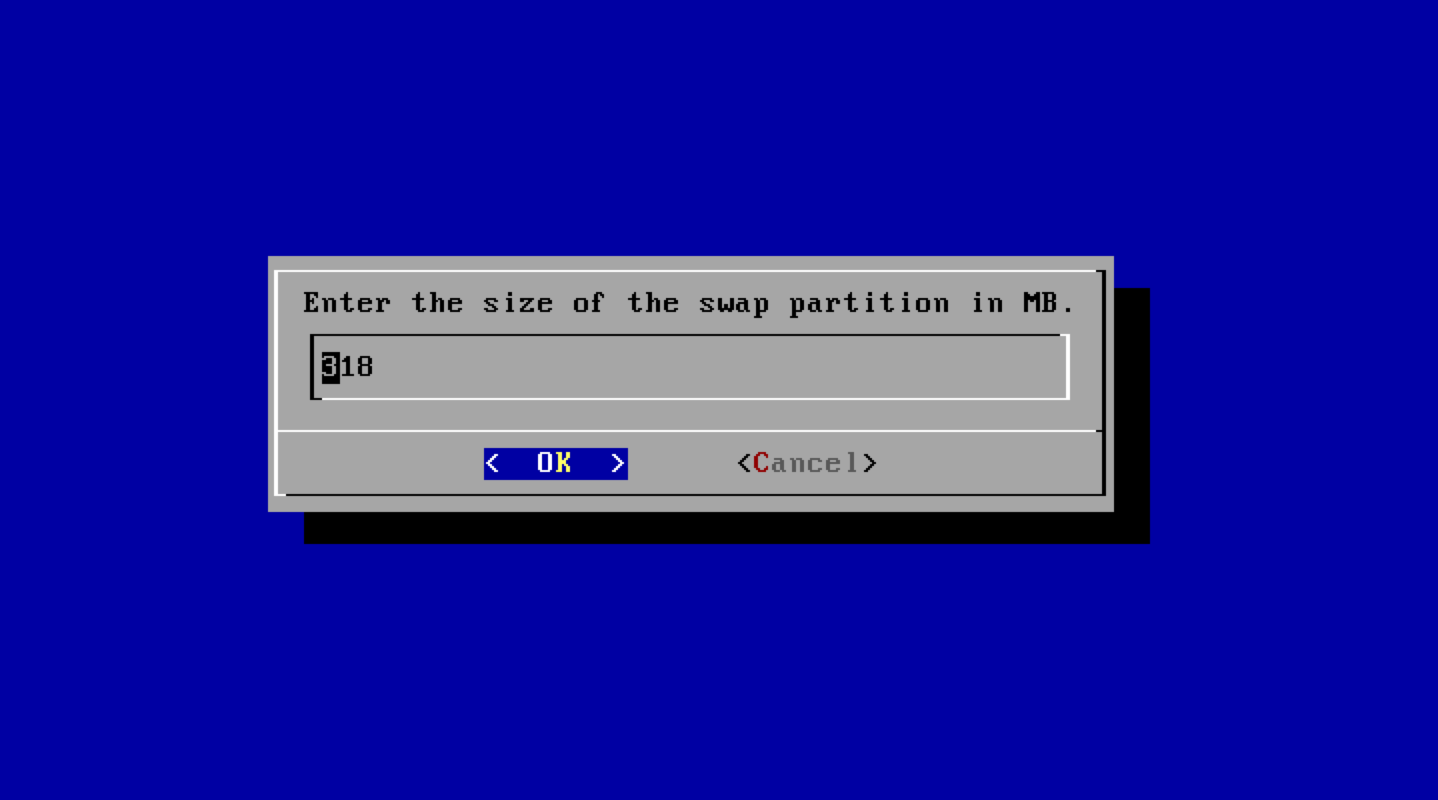 Enter the size of swap partition in MB.